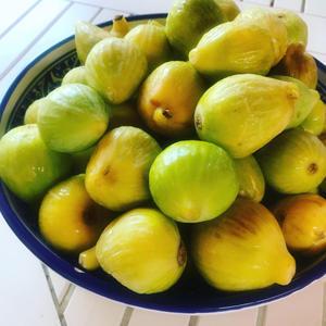 イチジクのジャムを作る ? 夏の保存食作り - 幸せなシチリアの食卓、時々旅