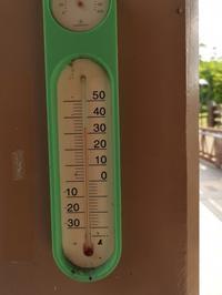 暑いです - 支配人日記