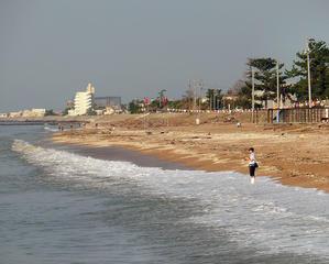 今朝の海 -