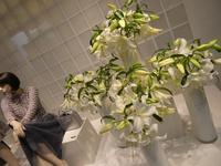 婦人服店のショーウィンドウで拝見した花あしらい~2019年8月16日 - ミモザアカシアの日々
