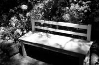 夏の終わり - 春夏秋冬*my story*