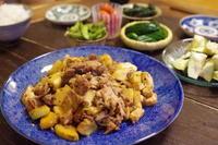 ユウガオの実と絹揚げと豚肉の炒め。 - 続・おおぐらい通信