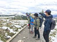 見れるかアシニボイン!ゴンドラで行くサンシャインハイキング - ヤムナスカ Blog