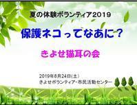 8月定例会開催(2019.8月) - きよせ猫耳の会(旧 飼い主のいない猫を考える会)