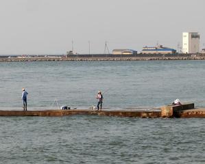 釣り日和 -