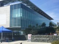 水族館の品質品質管理Vol.214 - シーエム総研ブログ