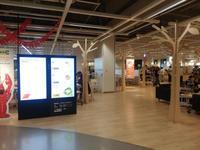 IKEAデビュー - 鳥見って・・・大人のポケモン2019