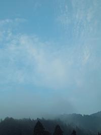 赤とんぼとクリ・・・19.9℃ - 朽木小川より 「itiのデジカメ日記」 高島市の奥山・針畑からフォトエッセイ