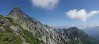 2019.7.30-8.2北アルプス・槍ヶ岳(5)タカネヒカゲ2019.8.20 (記) - たかがヤマト、されどヤマト