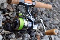 大内山釣行 - 釣り者の日々