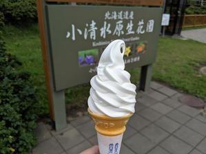小清水原生花園で美味しいソフトクリーム(クリーム童話:斜里郡小清水町浜小清水) - eihoのブログ2