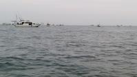 日曜日は遊漁船に乗りイカとタイ釣りへ行く - ステンドグラスルーチェの日常
