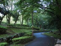 スナップ - エンジェルの画日記・音楽の散歩道