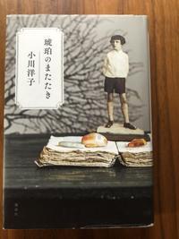ステラの本棚『琥珀のまたたき』 - 海の古書店