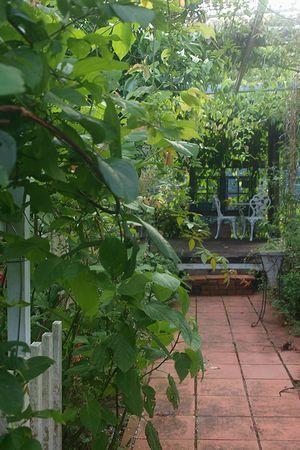 今日の庭とステンドグラスのパネルづくり - うりずん's garden ~薔薇に憧れて~