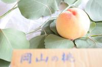 桃 - handmade atelier uta