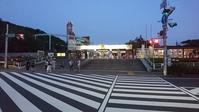 東山動植物園ナイトズー2019最終日! - 愛知・名古屋を中心に活動する女性ギタリストせきともこのブログ