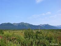 賑やかなピクニックRed Cottongrass 観察 - f's note ak