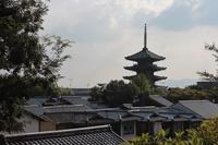 2019.8.18京都府坂道 - Mountain  Rose2