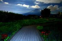 令和元年8月の富士(16)大石公園月明かりの富士 - 富士への散歩道 ~撮影記~