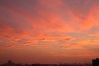 夕焼けに染まるうす雲(巻層雲)、すじ雲(巻雲) - 日々の風景