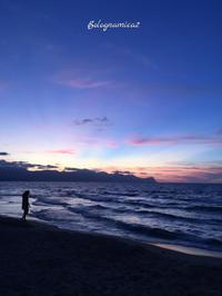 日没後の海 - ボローニャとシチリアのあいだで2