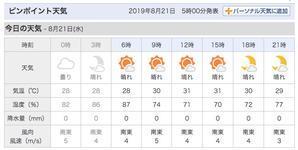 水曜日の朝、南東の風は弱めです。 - 沖縄の風