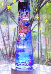 ☆夜空の花火のハーバリウム☆ - 軽井沢プリフラdiary