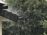 急に大雨! - 埼玉でのんびり暮らす