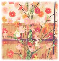 ひと足お先に秋桜〜あんしん学園前Ⅱ番館〜 - あのころをいつまでも、笑顔とあんしんのある日々を・・・