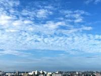 青い空 - RoseBijou-parler゚・*:.。.