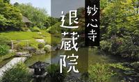 妙心寺退蔵院(その3)陰陽の庭 - レトロな建物を訪ねて