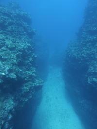 地形探検~ - 沖縄本島最南端・糸満の水中世界をご案内!「海の遊び処 なかゆくい」