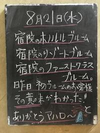 堺のリゾートSFR - bloomと私・・・