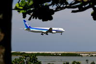 実は明日から... - 南の島の飛行機日記