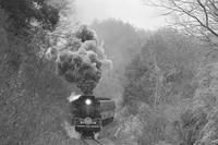 早春の峠- 1987年・山口線 - - ねこの撮った汽車