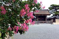 京都御苑百日紅 - ちょっとそこまで