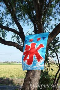 【安城市】13倉庫YETI FOODWORKS6 - クイコ飯-2