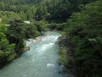『神崎川の流れと臭木(クサギ)の花』 - 自然風の自然風だより