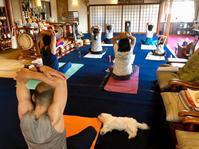 9月のお寺ヨガ in 本昌寺 - 全てはYogaをするために    動くヨガ、歌うヨガ、食べるヨガ