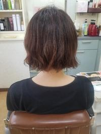 ゆるっとパーマ - ヘアーサロンササキ(釜石市大町)のブログ