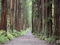戸隠の散策(2) 奥社と九頭龍社 - 散歩ガイド
