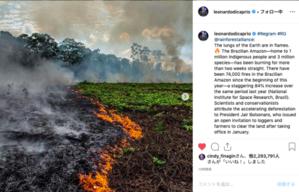 アマゾンの火災。環境問題に大きく影響 - Leonardo DiCaprio