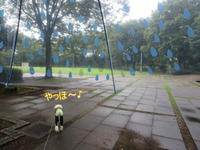 雨の公園♪ - おぽログ♪