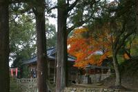 2010-11-13 - あるふぁ日記