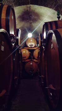 教皇にも愛されたワインの街モンテプルチャーノ - My little Lecce