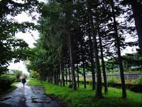 8月23日今日の写真 - ainosatoブログ02