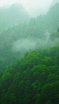 雨の黒部渓谷 - 風の香に誘われて 風景のふぉと缶