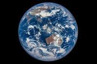 地球という母体。 - f o l i a g e  |  b l o g