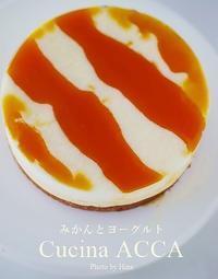 イルプルーレシピの「みかんとヨーグルト」 - Cucina ACCA